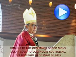 VIDEO DE LA HOMILÍA DEL SR OBISPO, DEL DÍA 17 DE MAYO DE 2015
