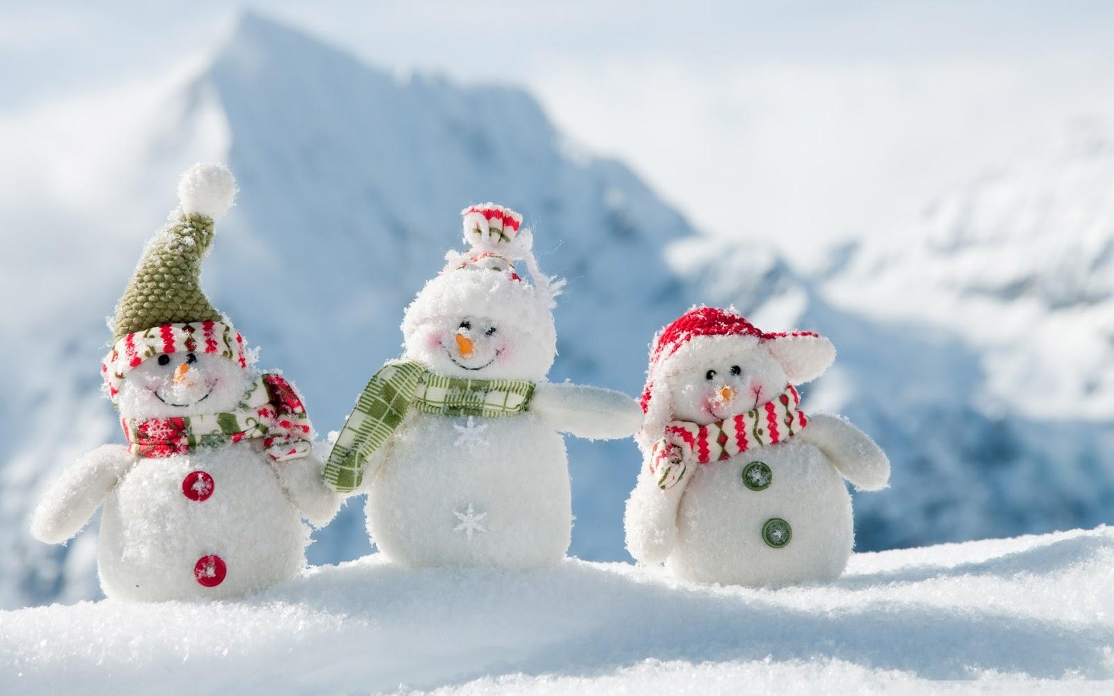 Winter Snow Wallpapers Snowfall In Kashmir Heavy Wallpaper 1306156