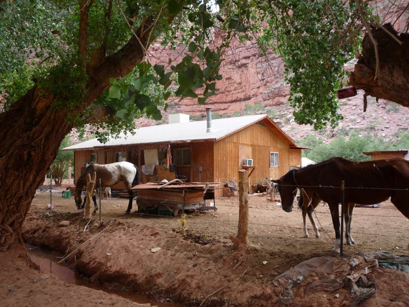 The Native Indians Village Supai, The American Indian Tribes of Arizona