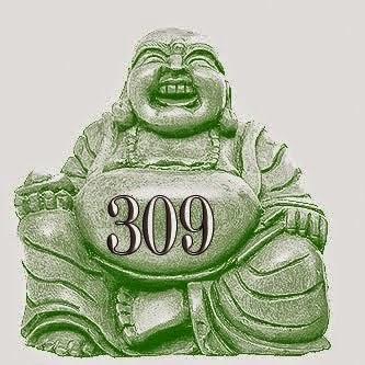 Stone 309
