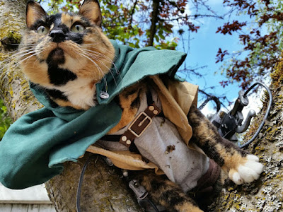 Ereneko, kucing cosplayer attack on titan 01