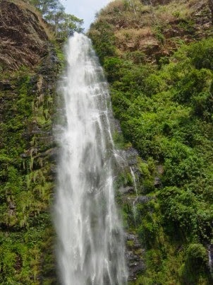 Wli Falls is the highest waterfall in West Africa