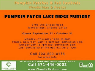 Pumpkin Patches near Woodbridge Virginia 2015, Lake Ridge Nursery Pumpkin Patch