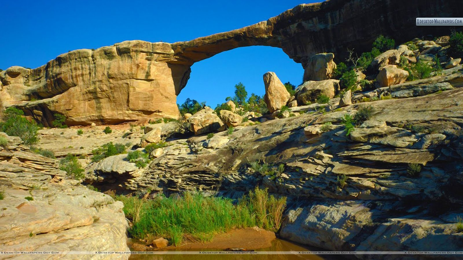 Owachomo Bridge Natural Bridges National Monument Utahjpg