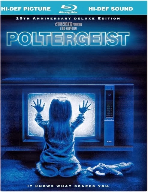 Poltergeist 1982 Hindi Dubbed Dual BRRip 300mb