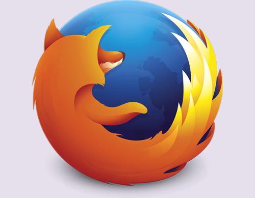 Add-ons for web developer