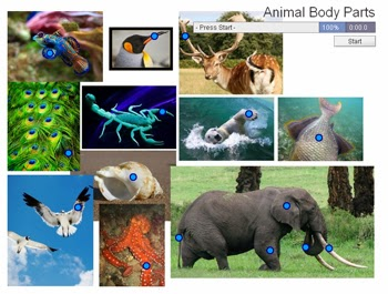http://www.purposegames.com/game/animal-body-parts-quiz
