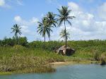 Imagens de paisagens  que coleciono...