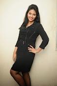 Anjali Glamourous Photos at Pranam Kosam audio-thumbnail-77