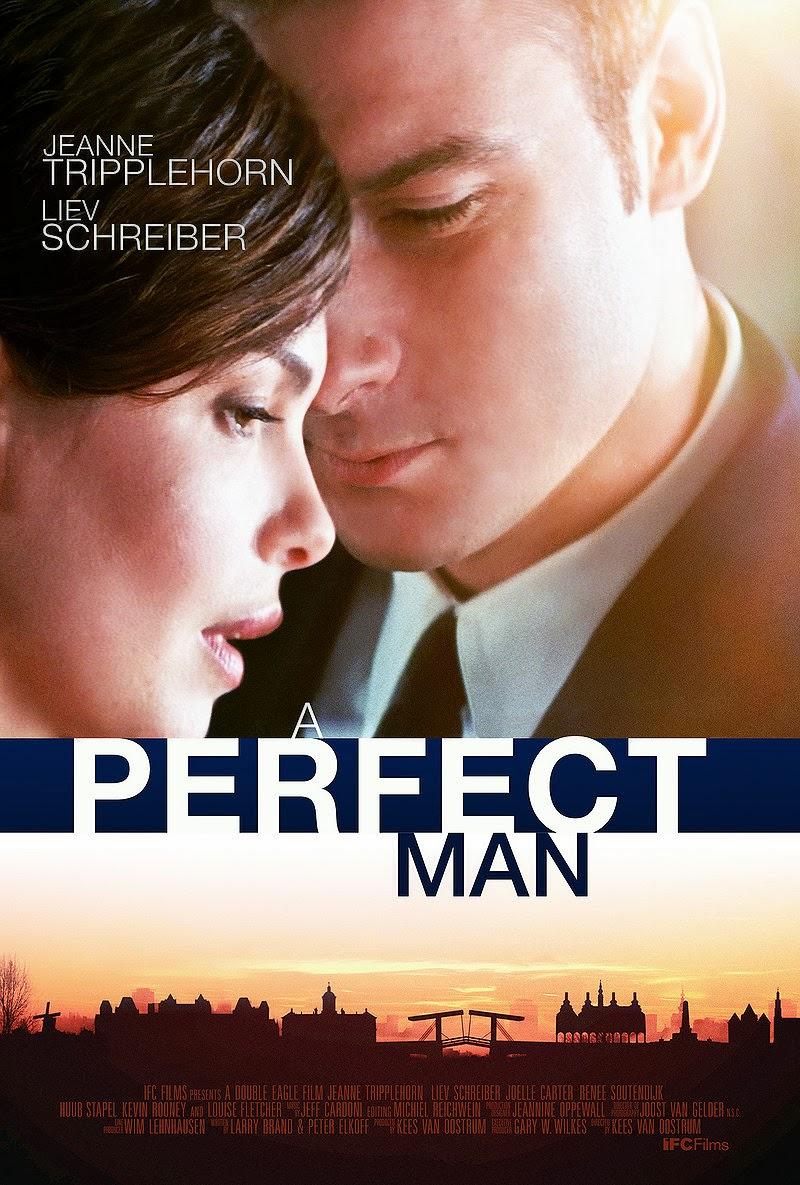 Baixar Filme Um Homem Perfeito   Dublado Download