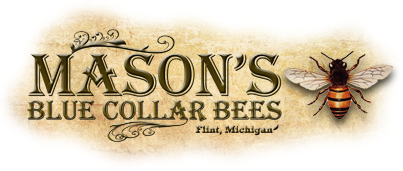 Mason's Blue Collar Bees