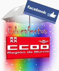 EDUCAFECTOS en Facebook