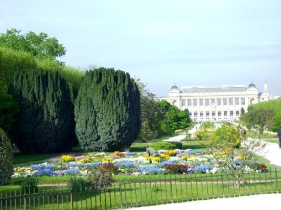 Paris Botanical Gardens - Jardin Des Plantes