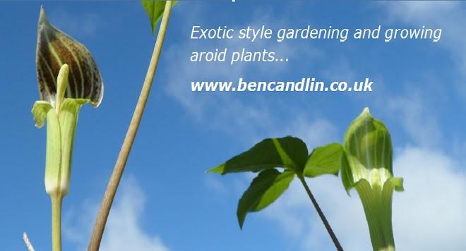Ben Candlin - Adventurous Gardens