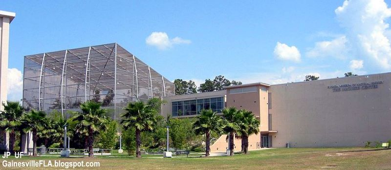 Gainesville Natural History Museum Hours