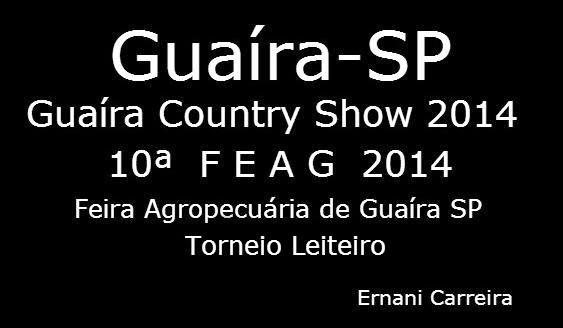 FEAG 2014 Guaíra SP