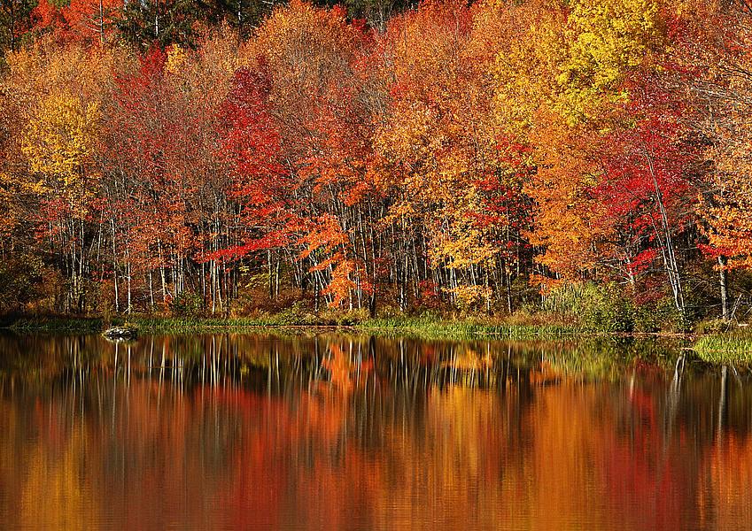 Peak Color by Paul Grecian
