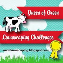 Challenge 110 Winner