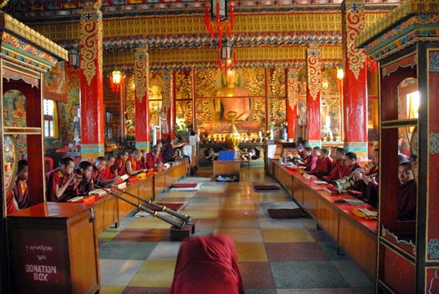 Monks at Shechen Monastery