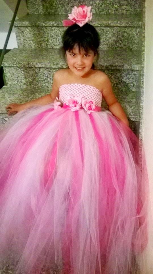 Mis Vestiditos de Cuento Hadas: Vestido de Tul y Rosas