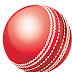 Kookaburra Cricket Ball