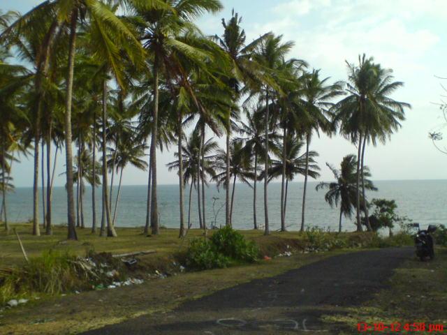 View Timur Pantai