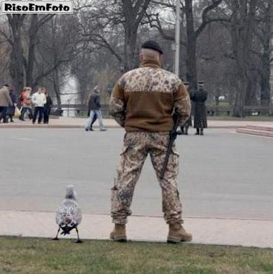 Pássaro faz pose similar à do militar ao seu lado.