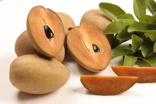 Permalink to Top 5 Sapodilla Fruit Benefits
