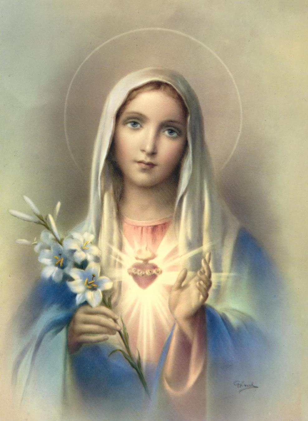 Biografía de la Virgen María - Católicos Firmes en su Fe