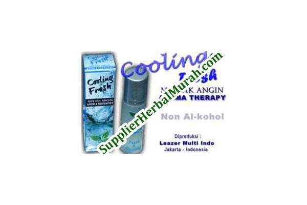 Minyak Angin Aromatherapy Cooling Fresh