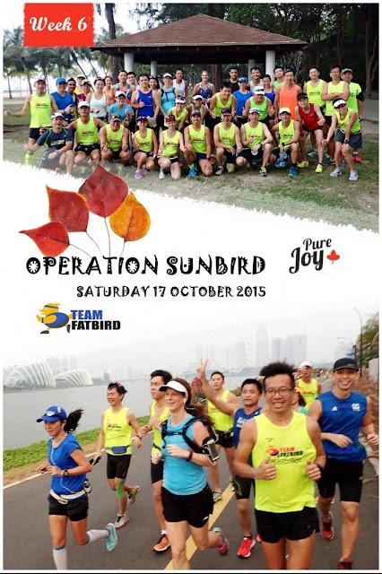 Sunbirds kickstart Marathon Pace training