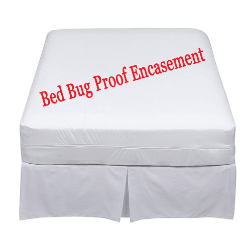 Target Bed Bug Mattress Cover Bed Bugs Toronto - Toronto Bed Bugs Help: Bed bug mattress covers ...