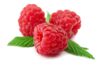 ราสเบอร์รี่ (Raspberry) @ www.capriccigelato.it