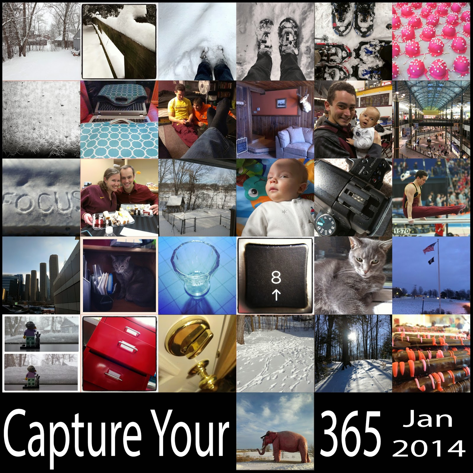 Capture Your 365 - Jan 2014