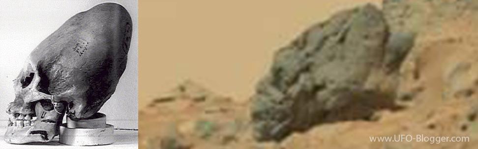 http://4.bp.blogspot.com/-Rx5AGFSwVK4/VEA4zFYFWTI/AAAAAAAAHv0/psO5htx339k/s1600/fossilized-mars-nephilim-skull-paracas-skulls-mars-alien-skull-closeup.png