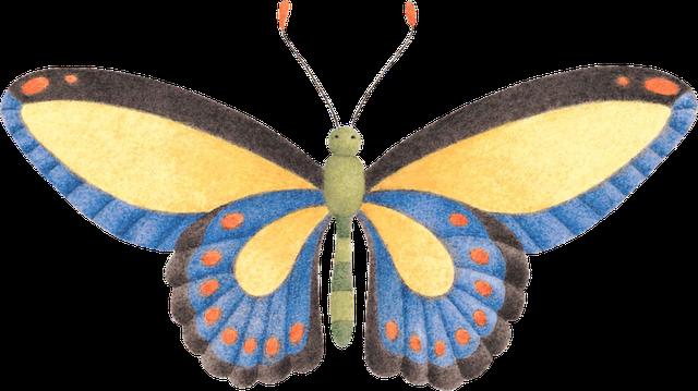 Imagenes de insectos para imprimir imagui - Fotos de insectos para imprimir ...