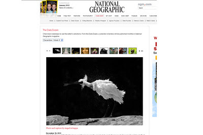 image published on National Geographic Magazine website