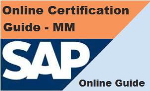 SAP Online Guide
