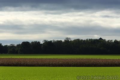 champs campagne automne contraste nuages Sénart Seine-et-Marne