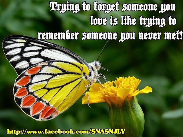 trying to forget someone you love, Sometimes Naughty and Sometimes Nice, facebook, quotes, images, pics