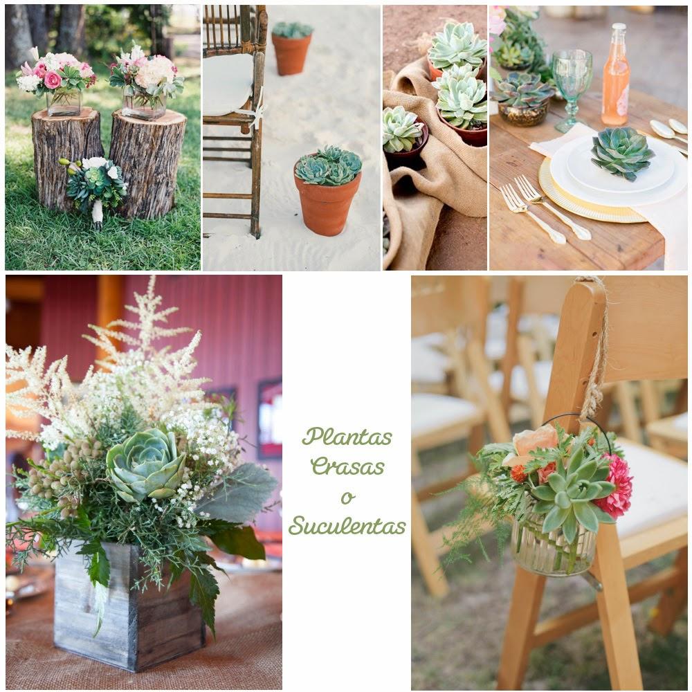 decoraci n de bodas con plantas suculentas something