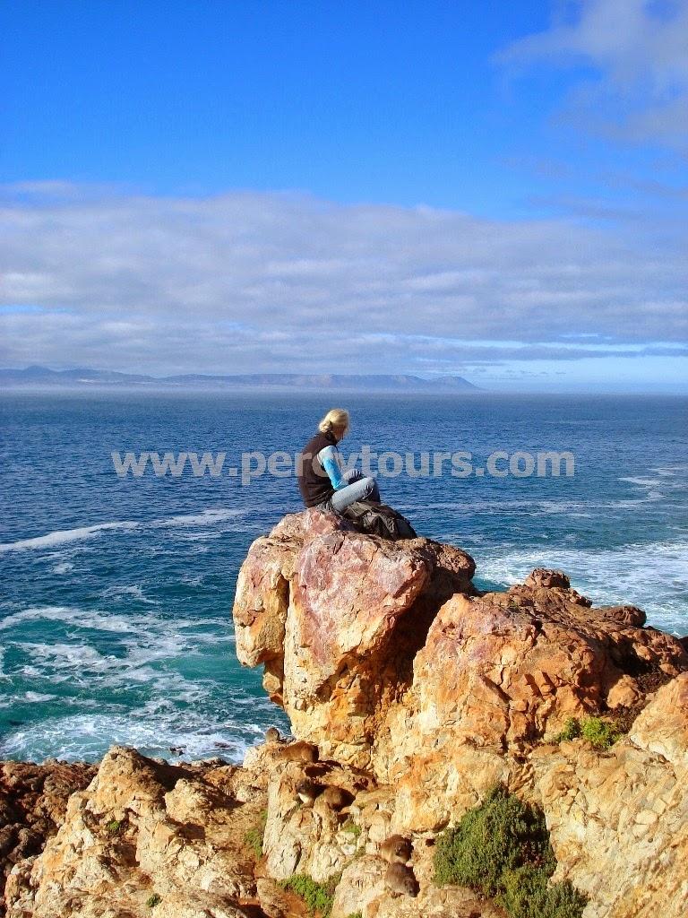 Hermanus cliff tops, Walker Bay