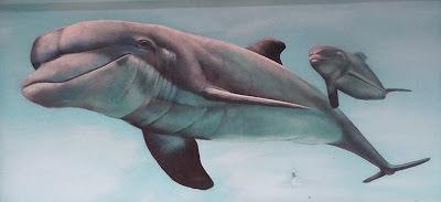 Pintura mural decorativa de delfines