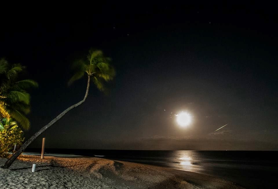 Exotic night time beach view