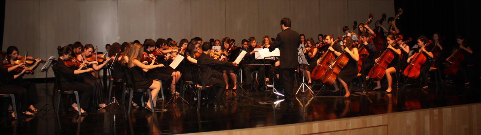 Proyecto Orquestal Promusica de Malaga