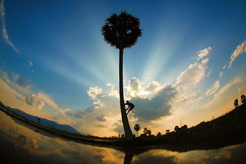 Hình ảnh đẹp về làng quê Việt Nam, lang que Viet Nam