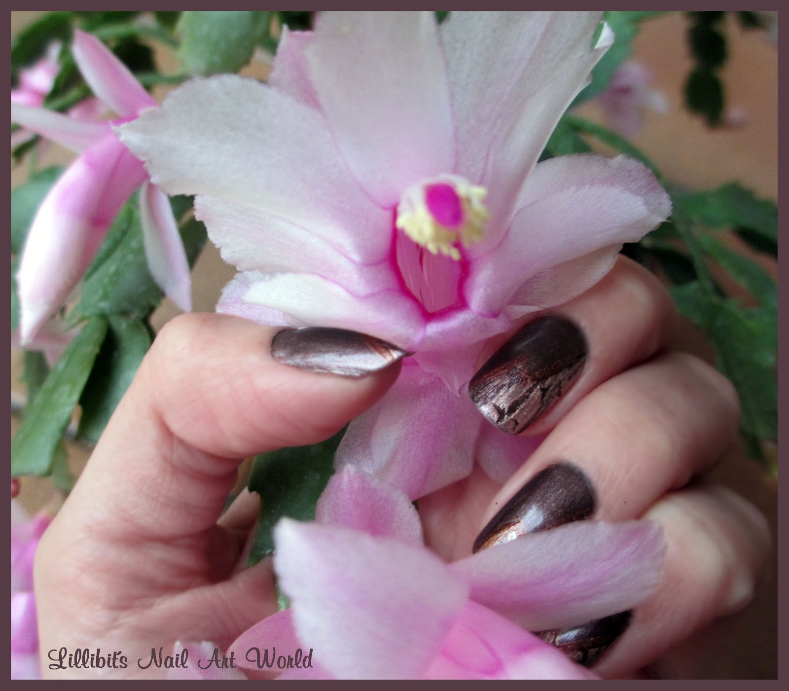 Lillibit s nail art world sobrio craquelado for Cactus navideno