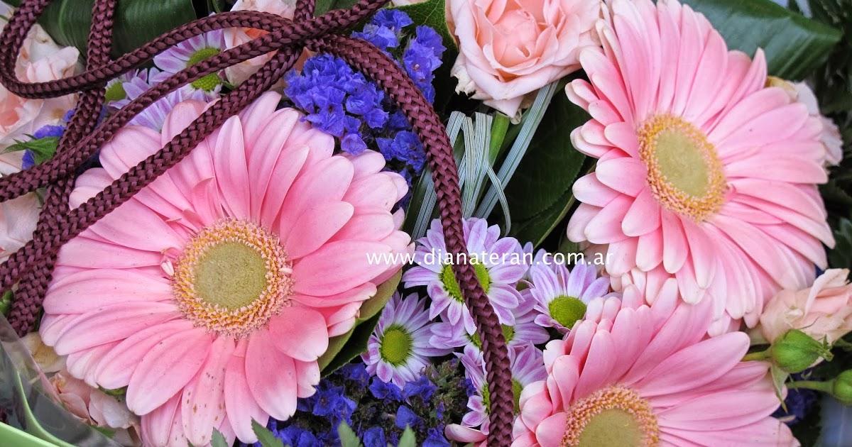 Diana teran fotos de flores fotos de rosas de - Diana de colores ...