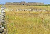 Paisaje agrícola del sur de Öland.