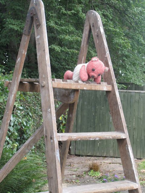 Fiddly Fingers crochet bear Taffy climbed ladder now stuck